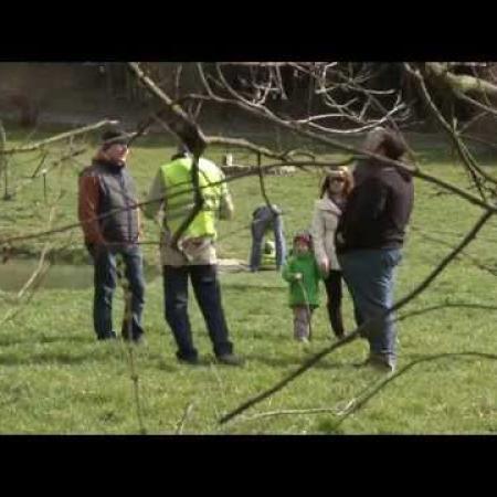 Zöldövezet 2015 április - Békamentés Aranyoslapon (Zalaegerszeg)
